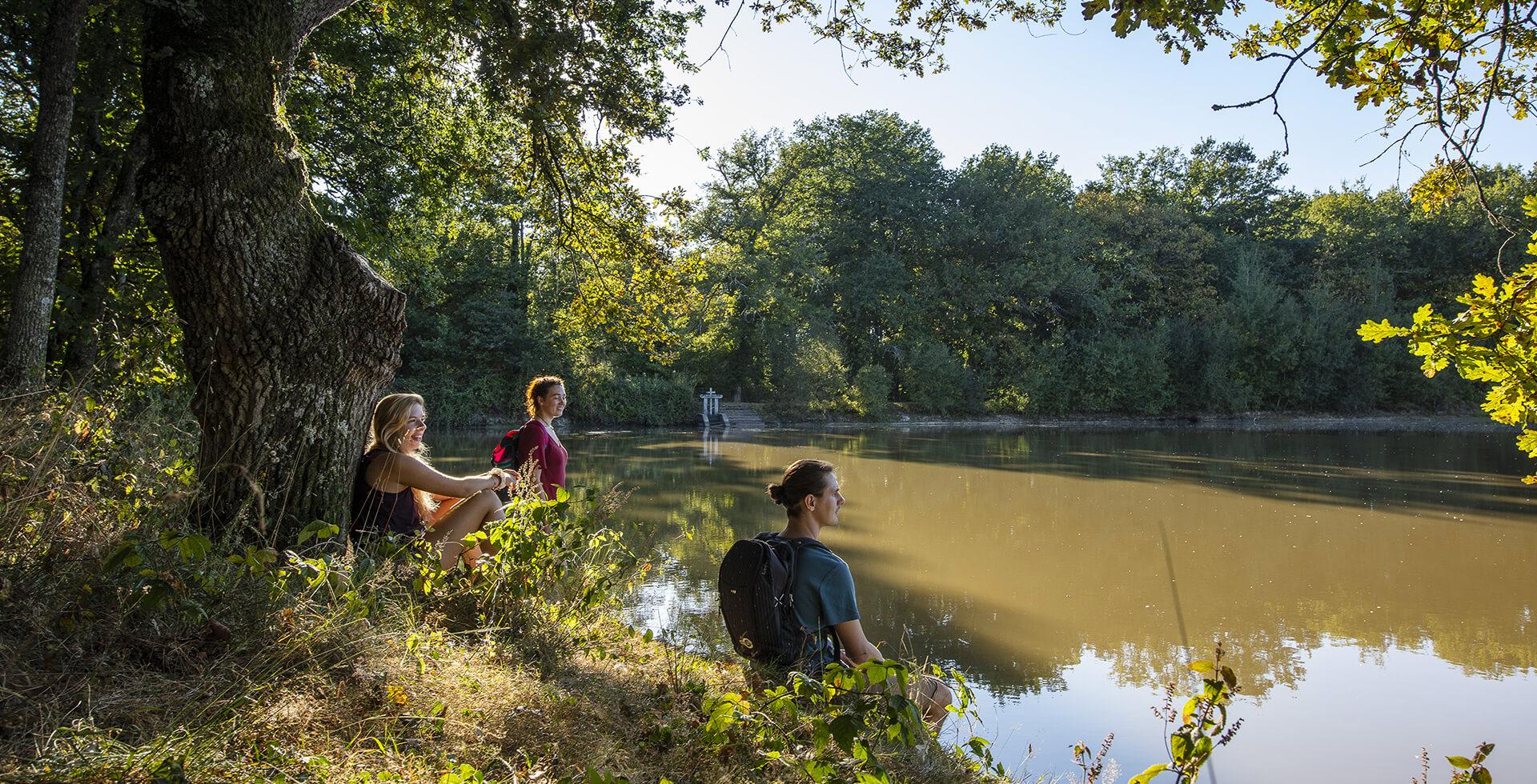 La Sologne et ses 3000 étangs en Loir et Cher - Val de ...